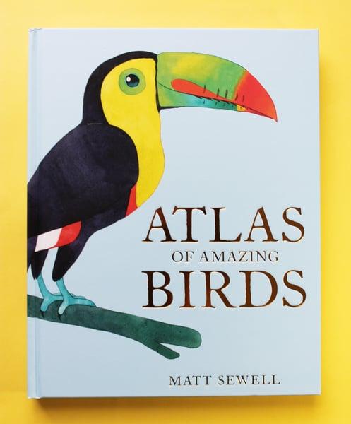 Image of Atlas Of Amazing Birds - Signed/Drawn Hardback