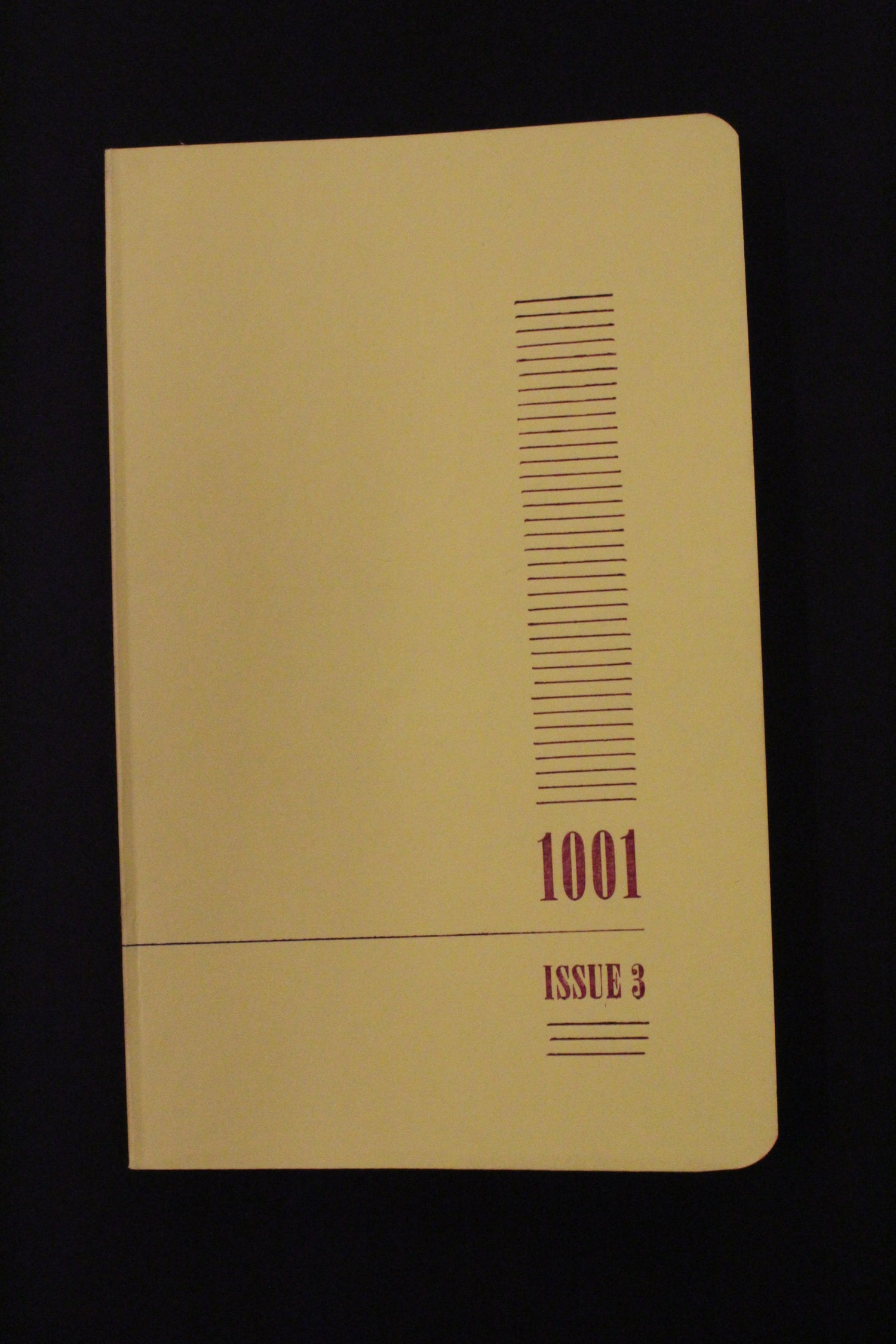 Image of 1001 Journal Issue 3