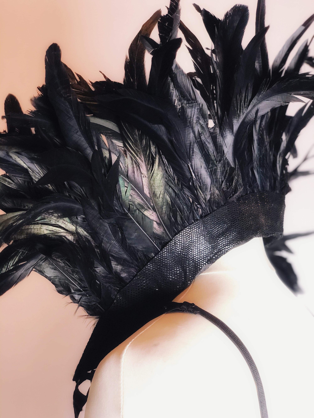 Image of Leather & Feathers - Custom Collar and Harness Set