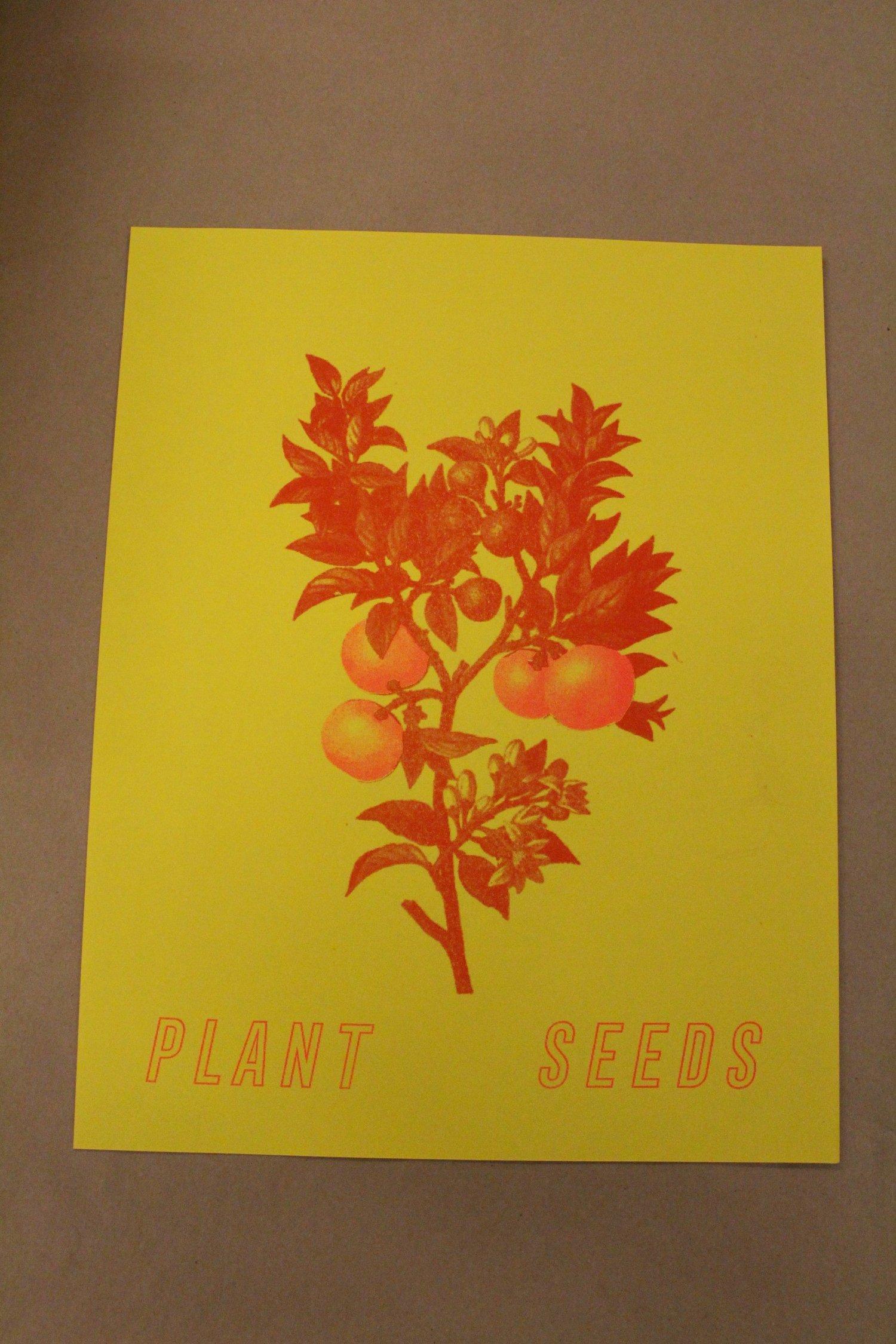 "Image of Sarah Mirk ""Plant Seeds"" Risograph Print"