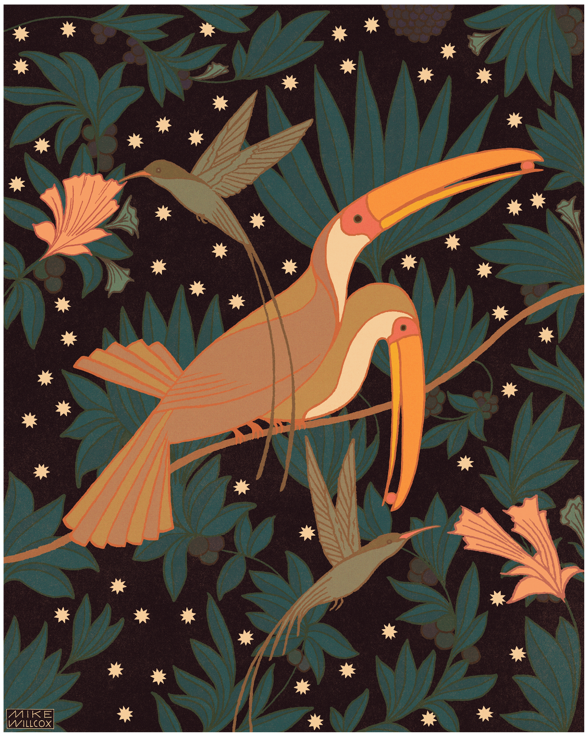 Image of Doctorbirds & Toucans