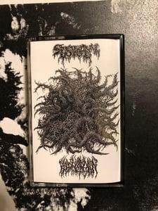 Image of Spectral Voice / Blood Incantation CS