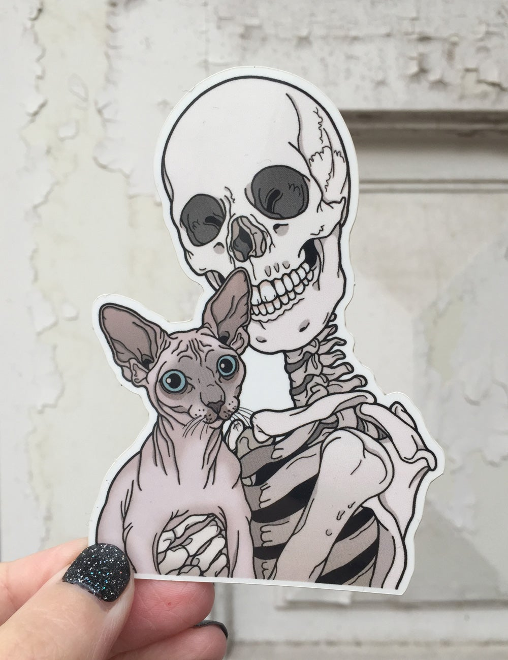 Image of Sphynx cat sticker