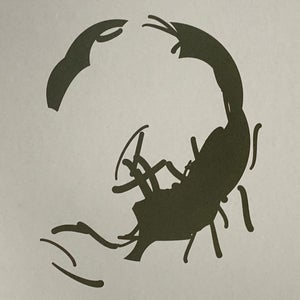Image of Two Scorpions