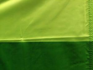 Image of Standard Bellingham Flag