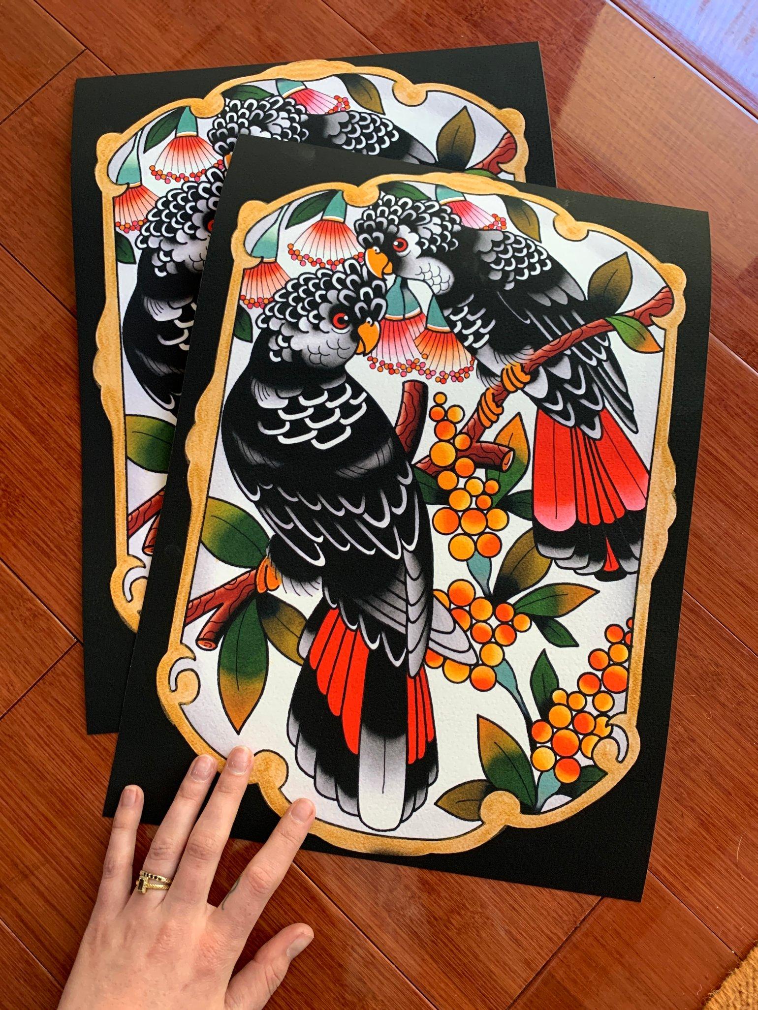 Image of Australian Black Cockatoos