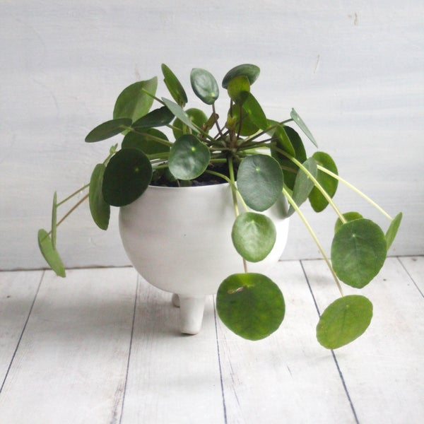 Image of Quirky Tripod Planter in Modern Matte White Glaze, Ceramic Pottery Flower Pot, Made in USA - 1