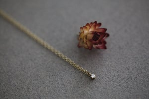 Image of 'little diamond' necklace