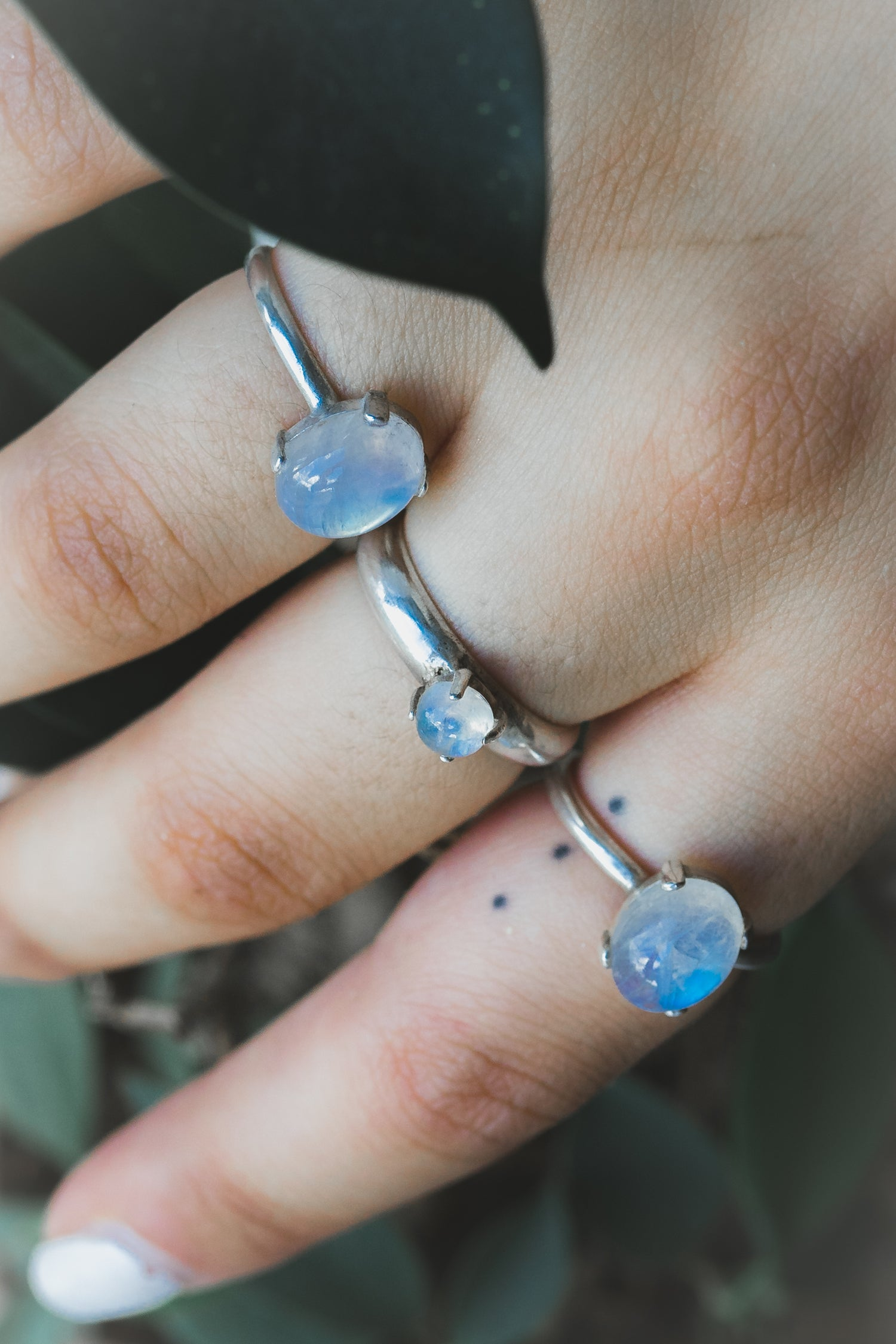 Image of FIRENZA MOONSTONE RING