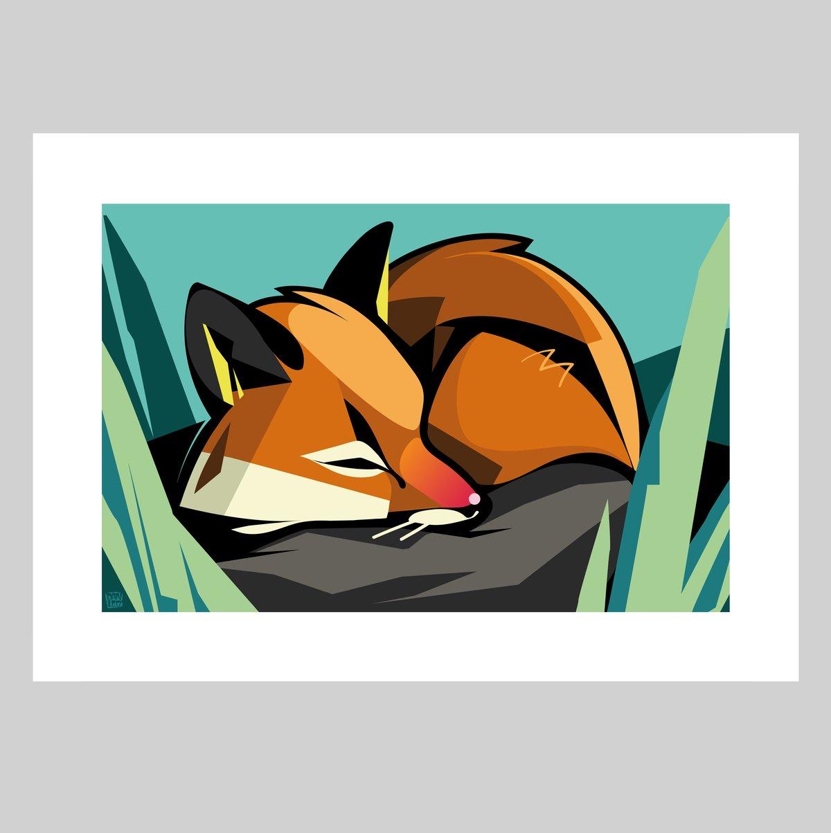 Image of Sleeping Fox Print