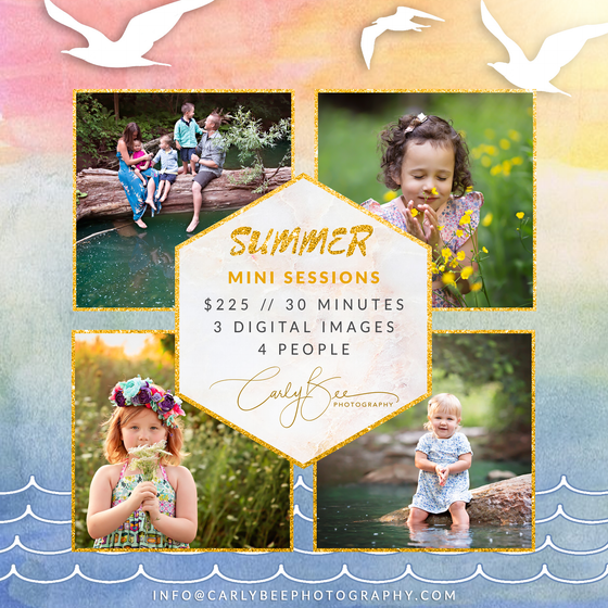 Image of ☀️ 2020 Summer Mini Session ☀️