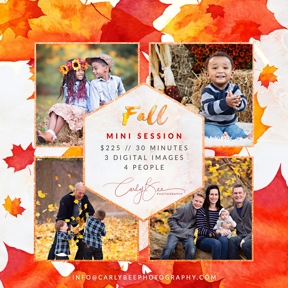 Image of 🍁 2020 Fall Mini Session 🍁