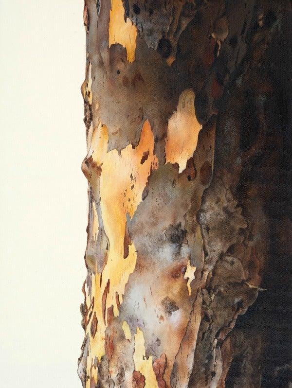 Image of Tree, Remembered