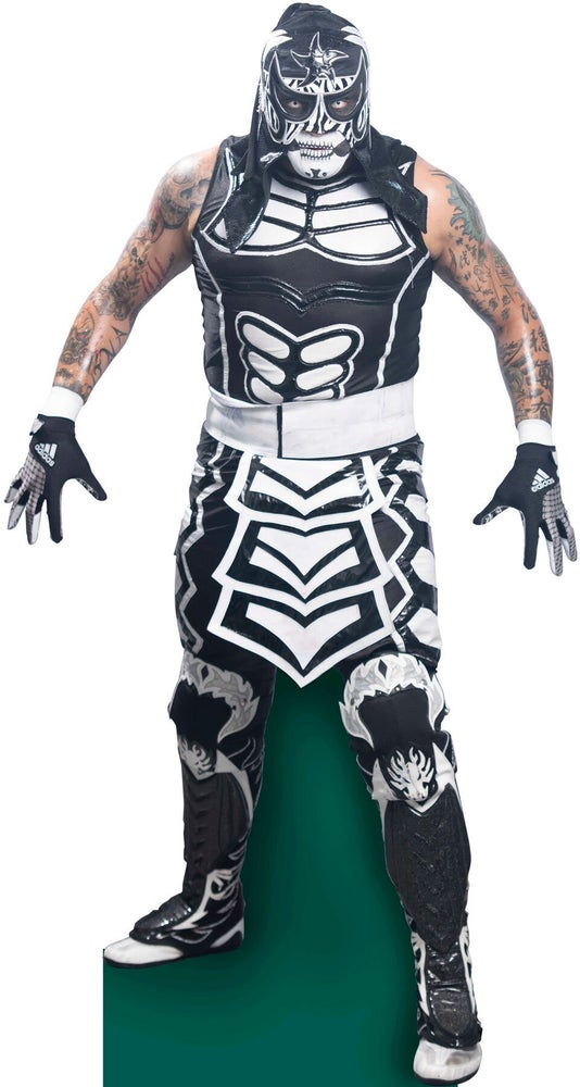Image of Penta Zero M - Life Size Cardboard Cutout (20% OFF BLACK FRIDAY SPECIAL)