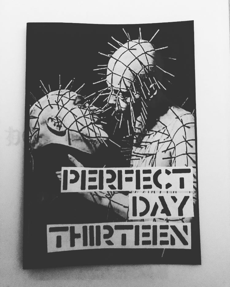 Image of PERFECT DAY ZINE #13