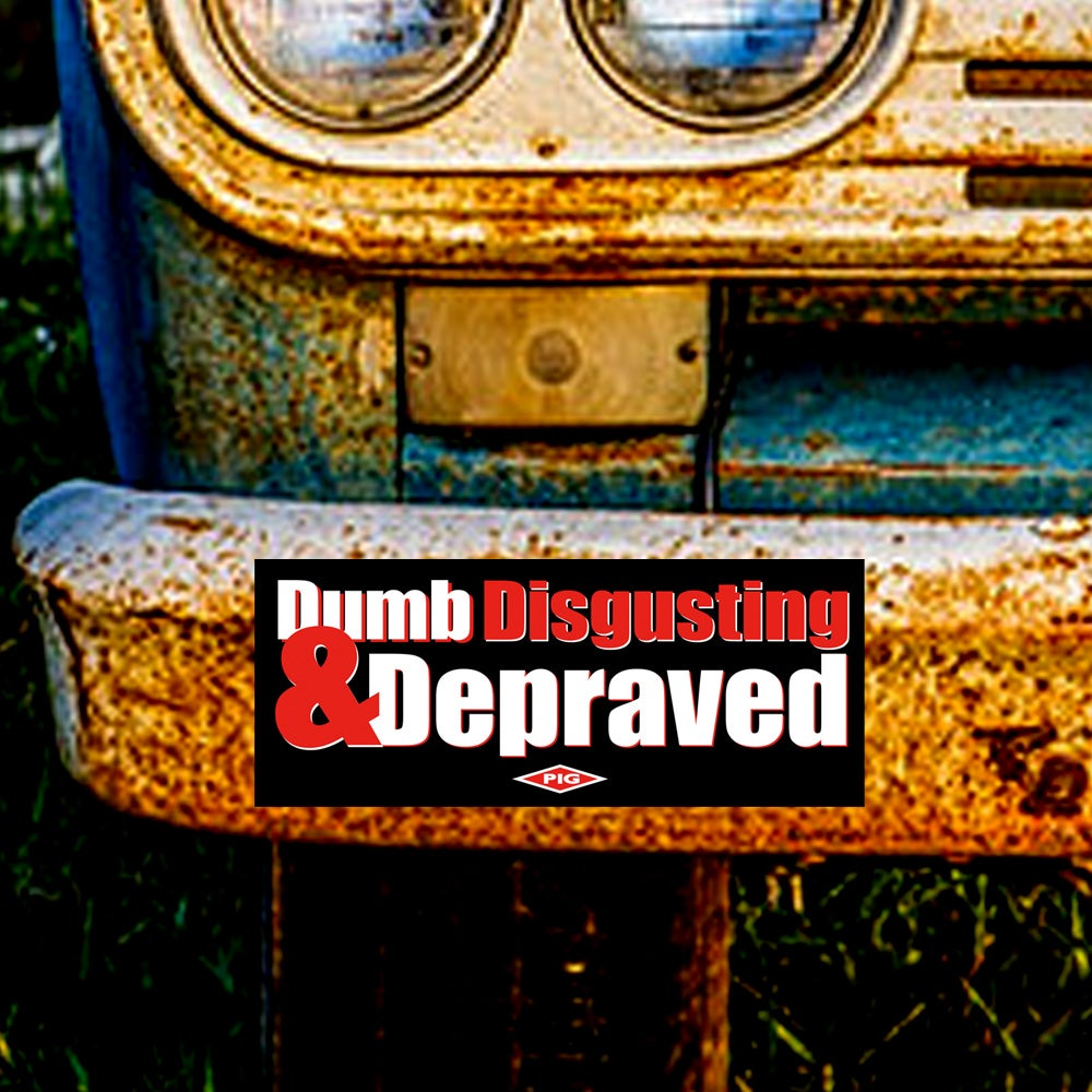 Image of DUMB, DISGUSTING & DEPRAVED - BUMPER STICKER