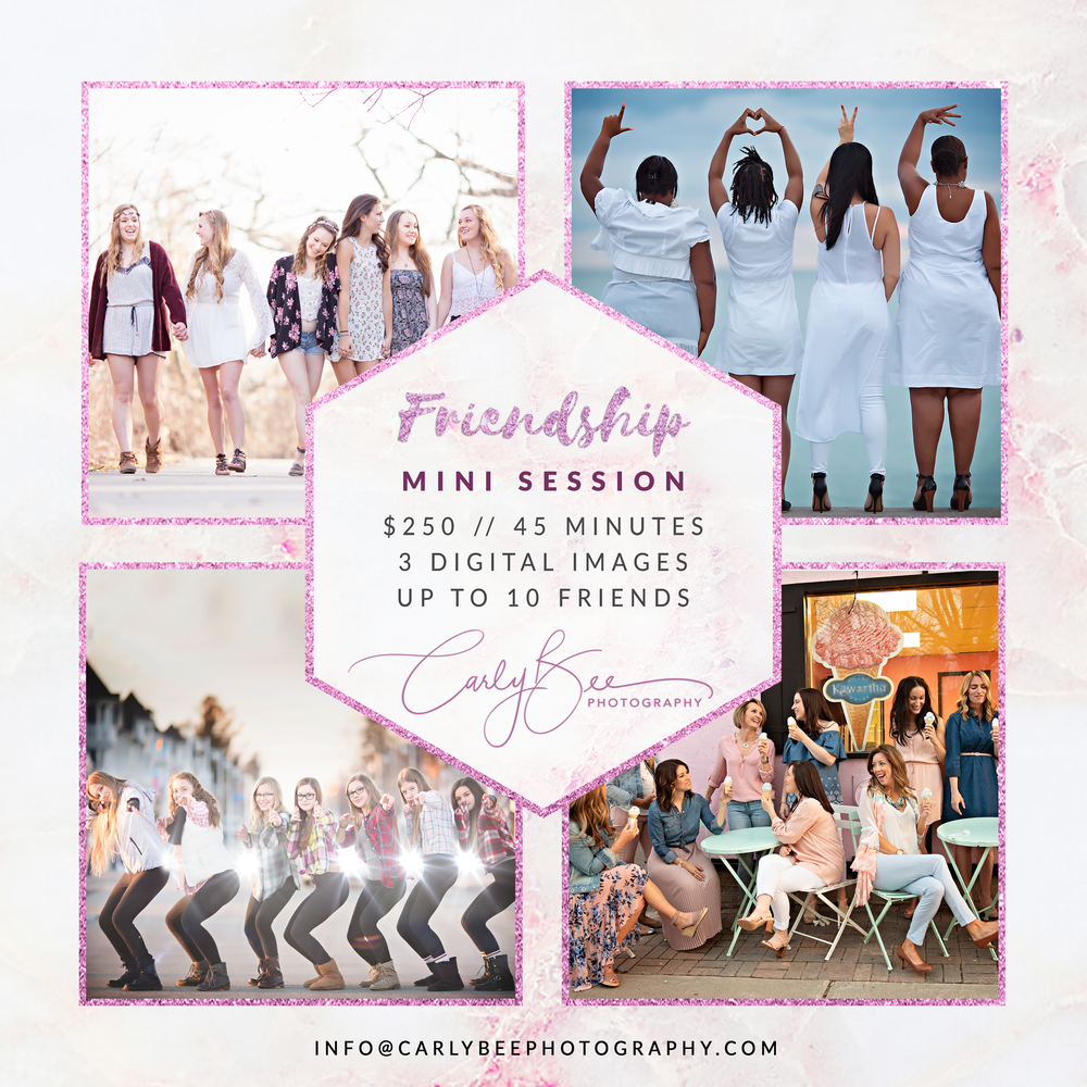 Image of 👯‍♀️ 2020 Friendship Mini Session 👯‍♀️