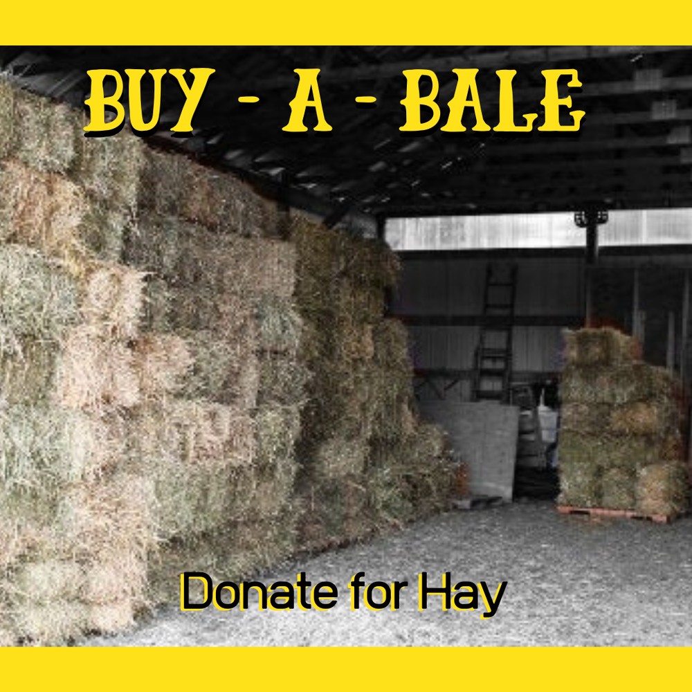 Image of Buy-a-Bale
