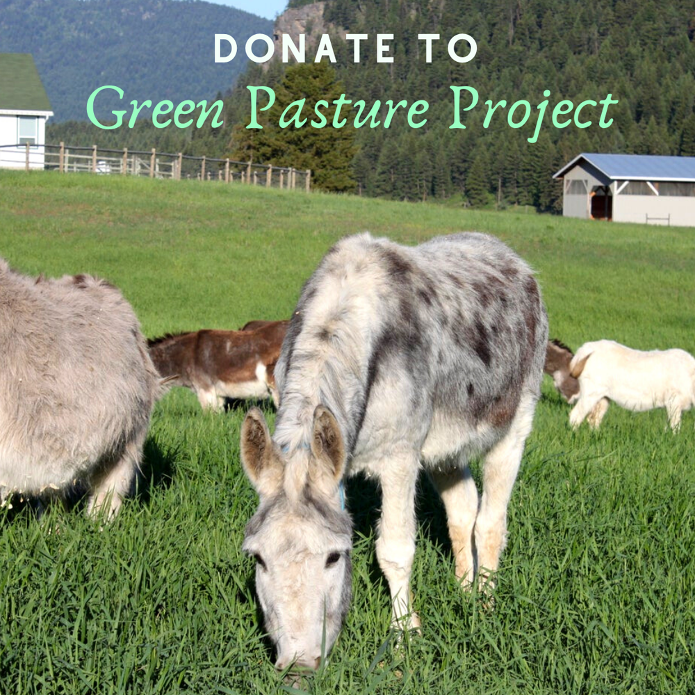 Image of Green Pasture Project Donation