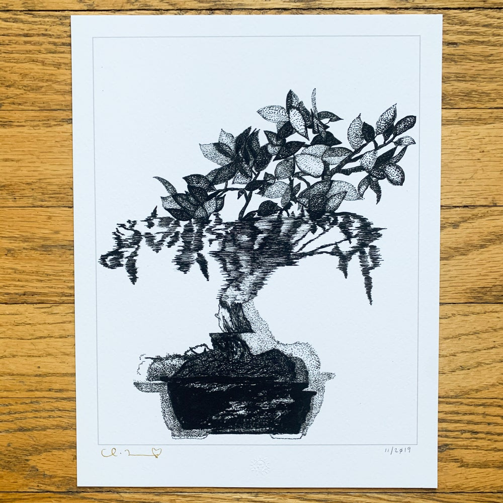 "Image of ""Bonsai"" 8.5""x11"" Giclee Fine Art Print"