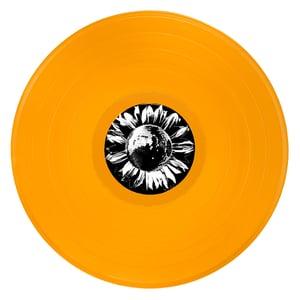 Image of Vinyl Repress