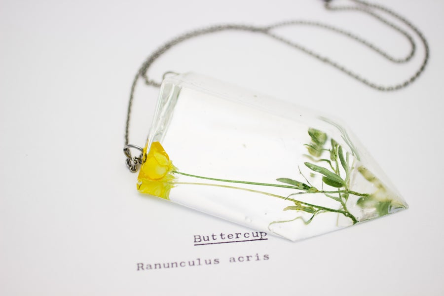 Image of Buttercup (Ranunculus acris) - Chunky Statement Piece #1