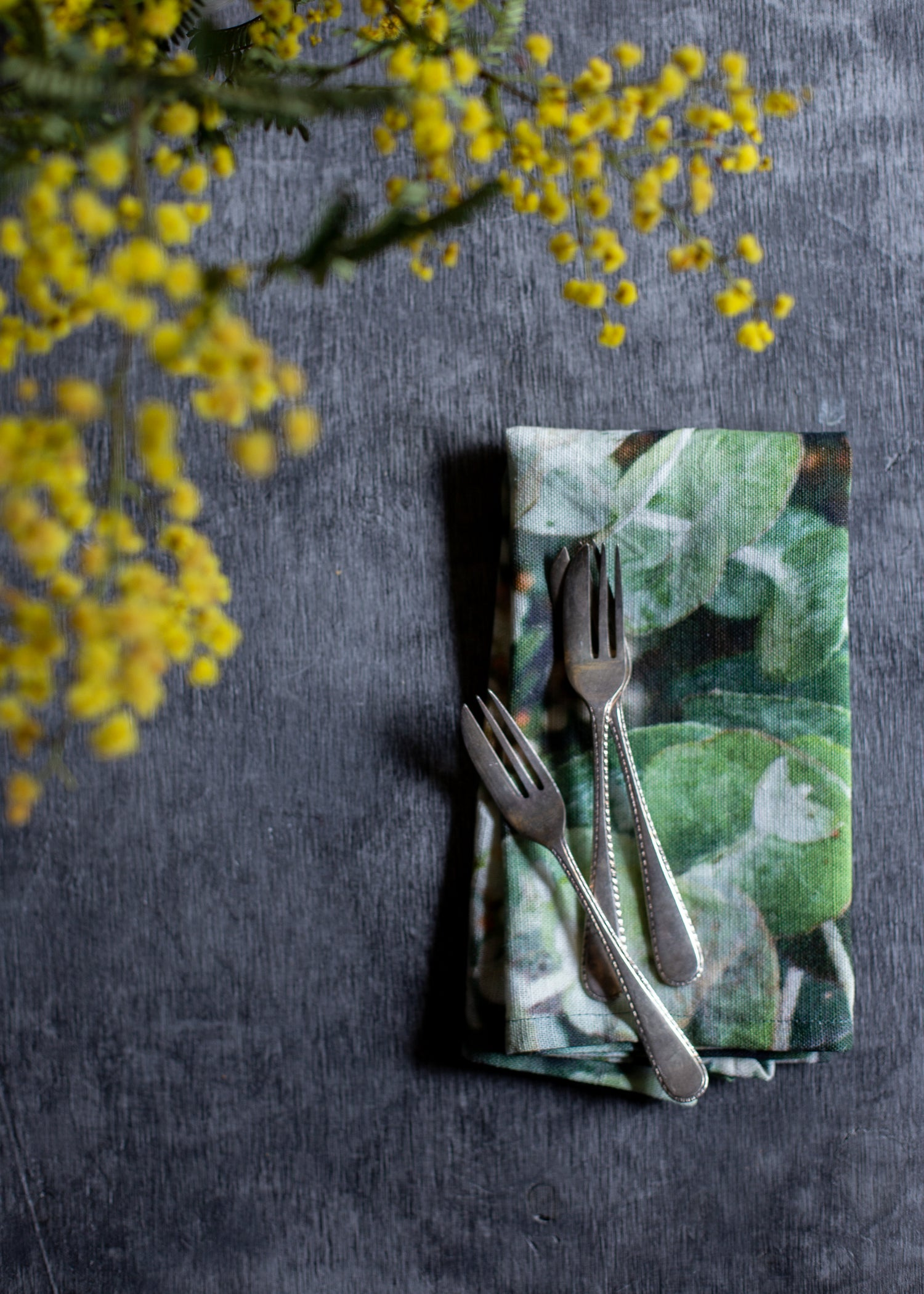 Image of Eucalyptus — Napkin (Set of 4)