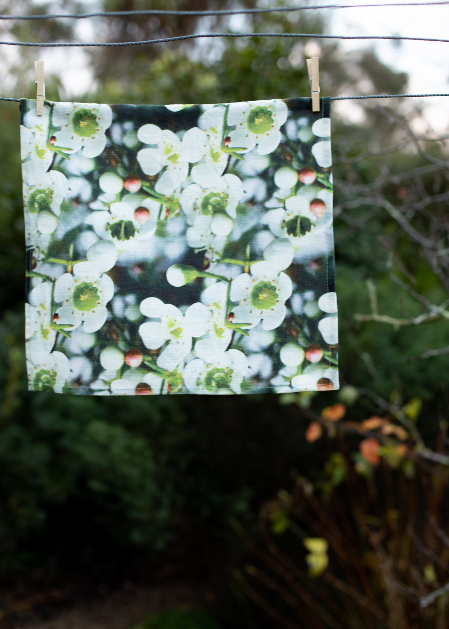 Image of In Bloom — Napkin (set of 6)