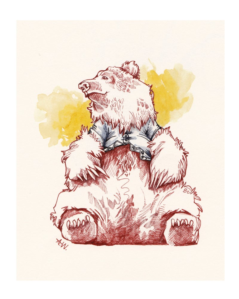 Image of Bear in a button up