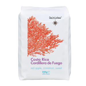 Image of cordillera de fuego - anaerobic - costa rica - 250g - coffee beans / ground
