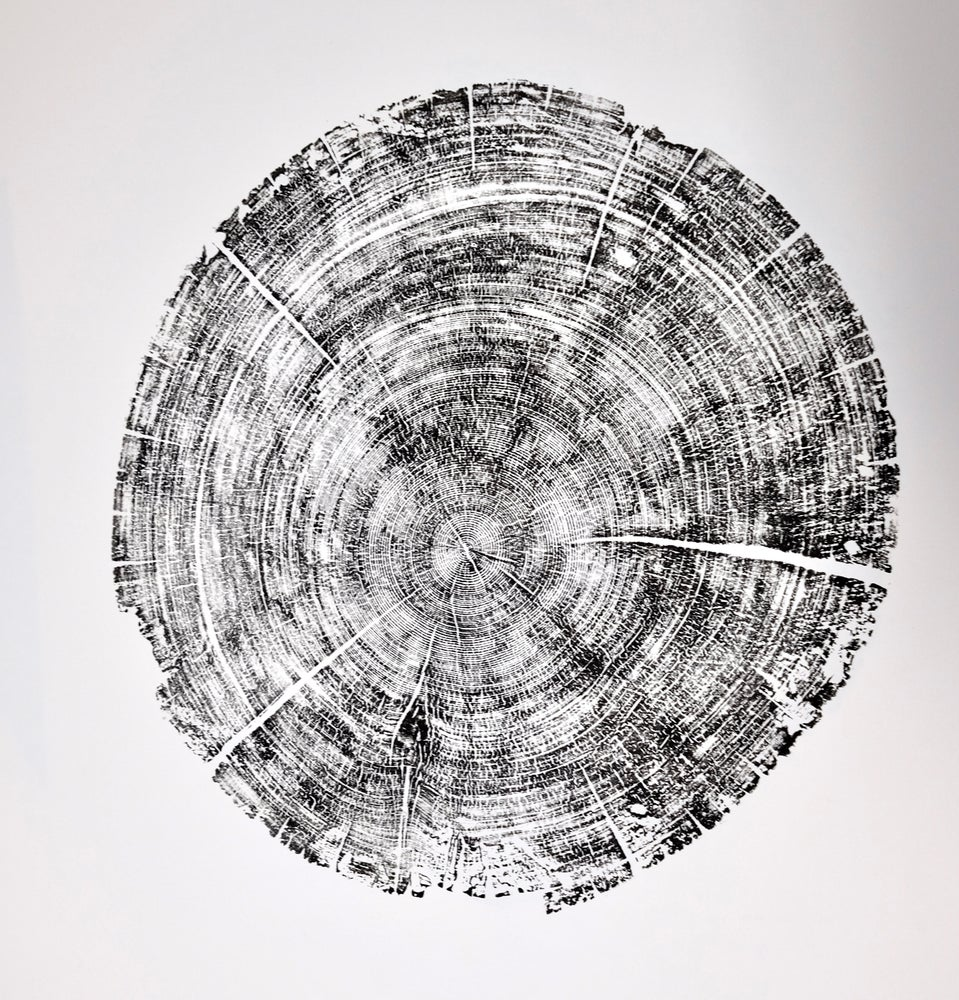 Image of we are carbon 26x40