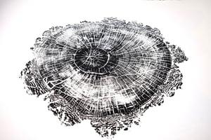 Image of douglas 38x50
