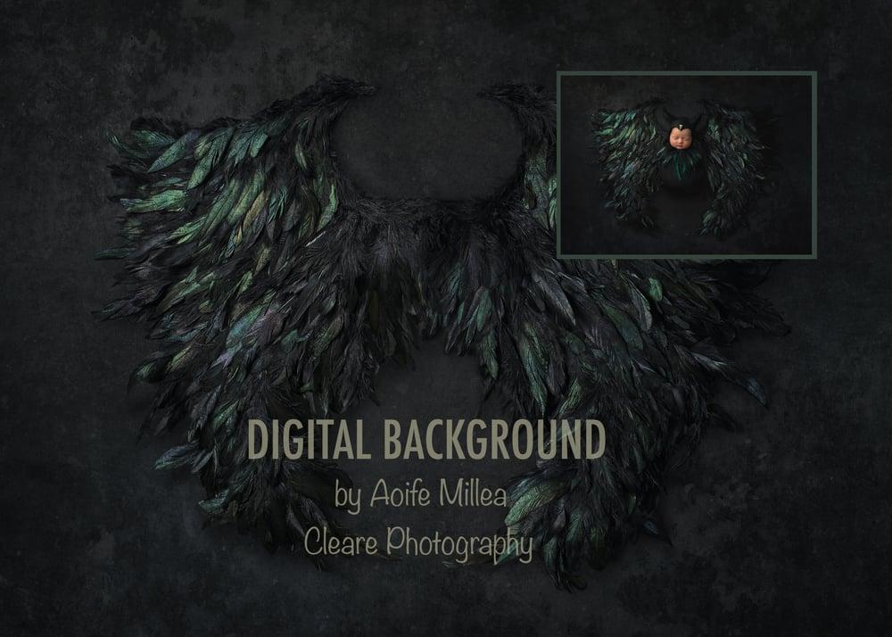 Image of dark wings newborn digital backdrop