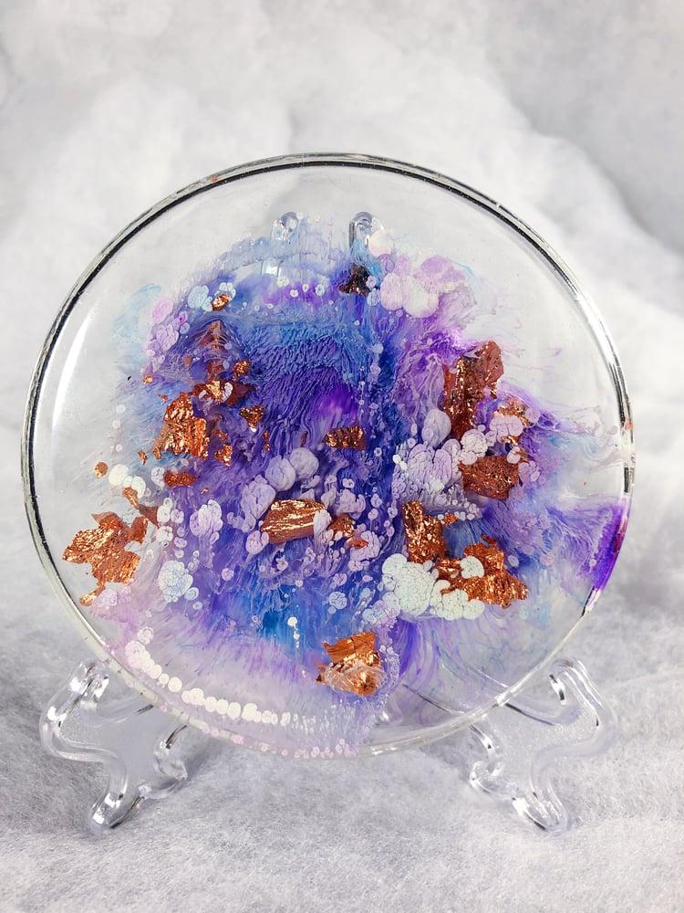 Image of lavender petri display