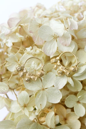 Image of Yellow Gold Vermeil Gumnut Hoops
