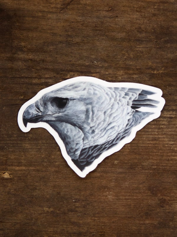 Image of Harpy Eagle Sticker
