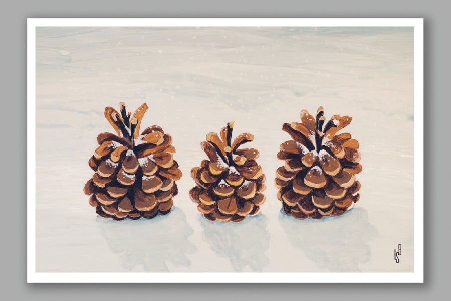 Image of Family of Pinecones card
