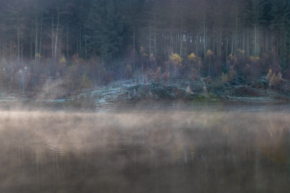 Image of MACCLESFIELD FOREST, MIST & DAWN, EARLY WINTER