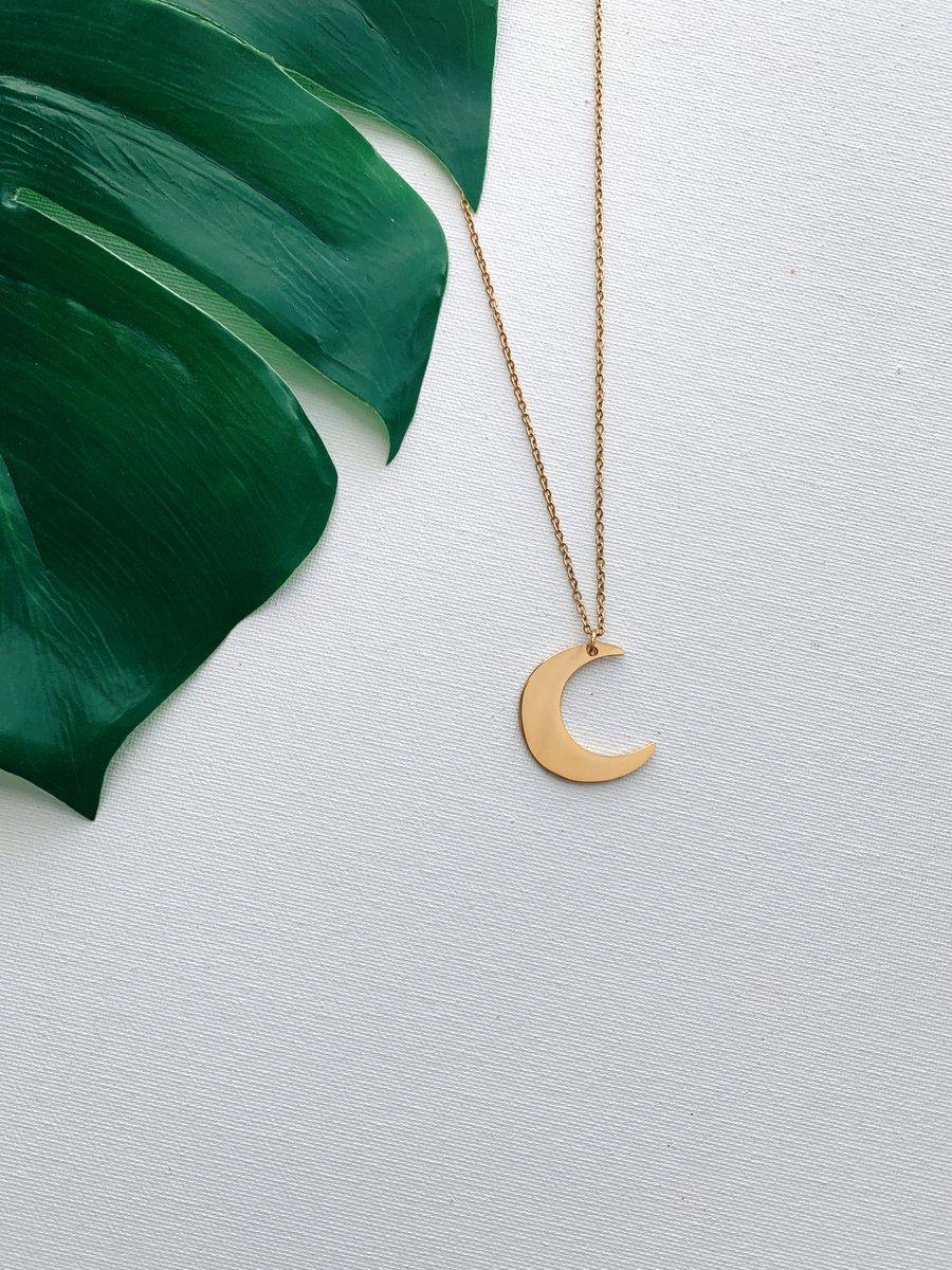 Image of LUNARI • Moon Necklace