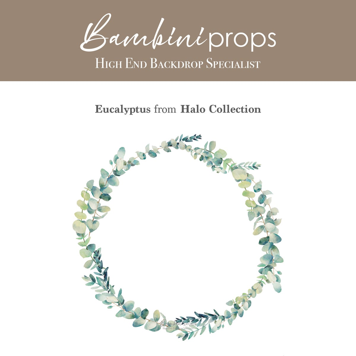 Image of Eucalyptus - Halo Collection