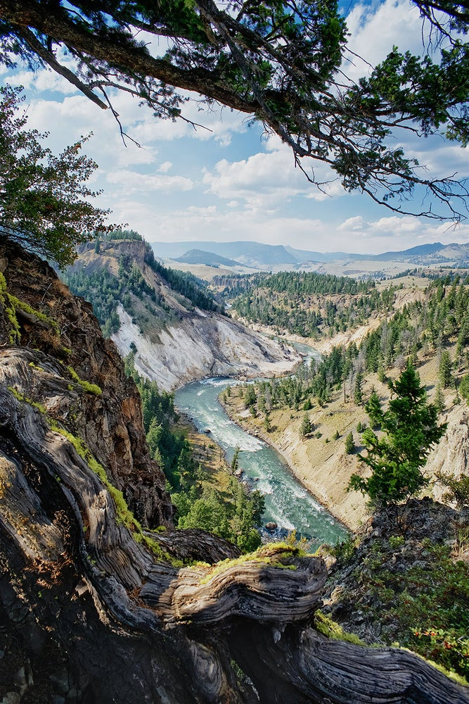 Image of Yellowstone Valley