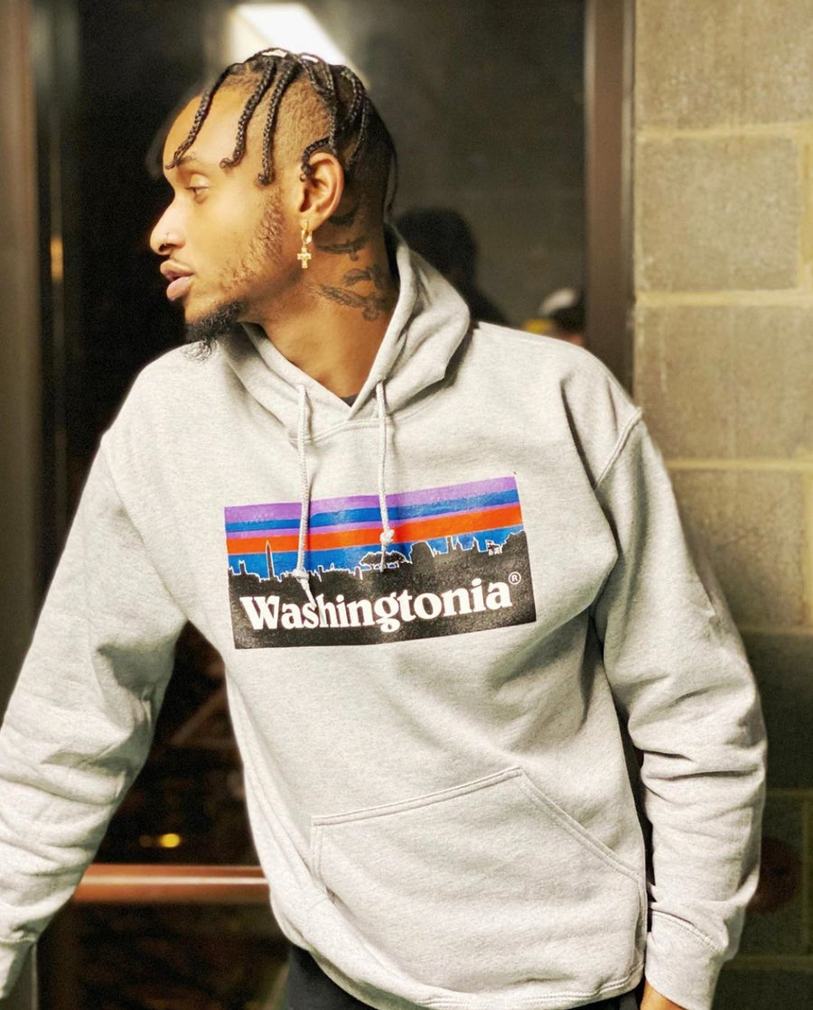 Image of Washingtonia Hoodie