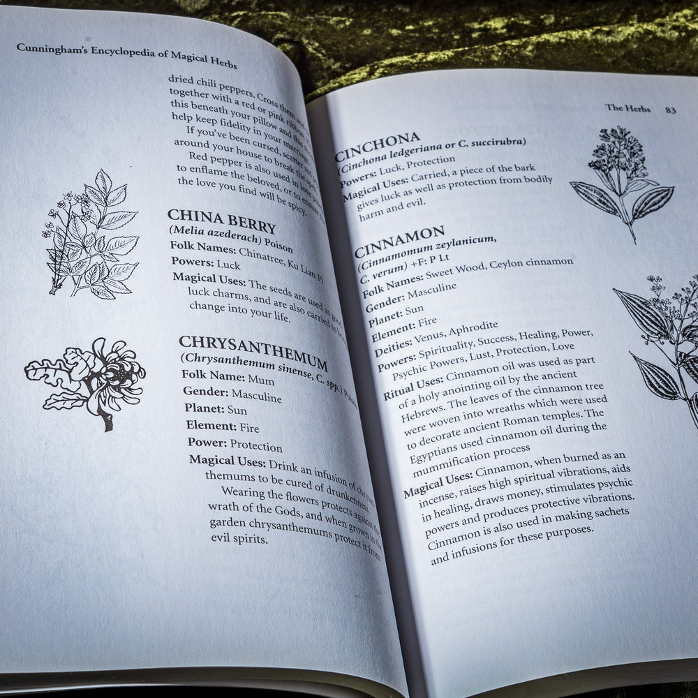 Image of Encyclopedia of Magical Herbs