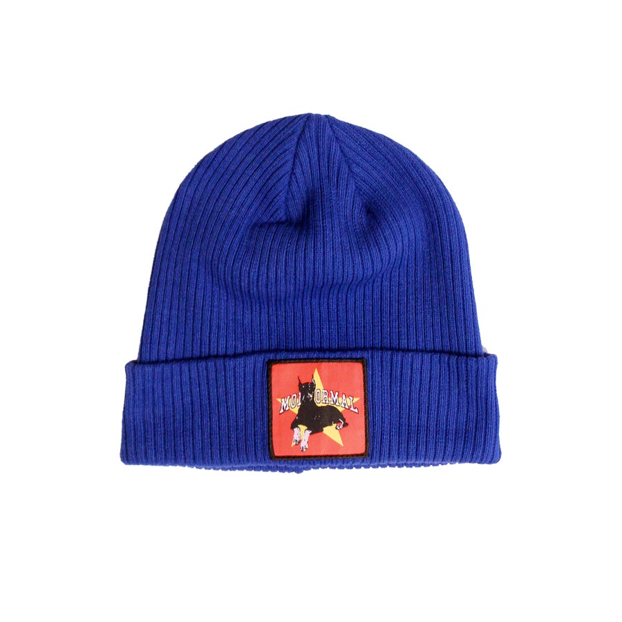 Image of BITESTAR KNIT CAP (BLUE)