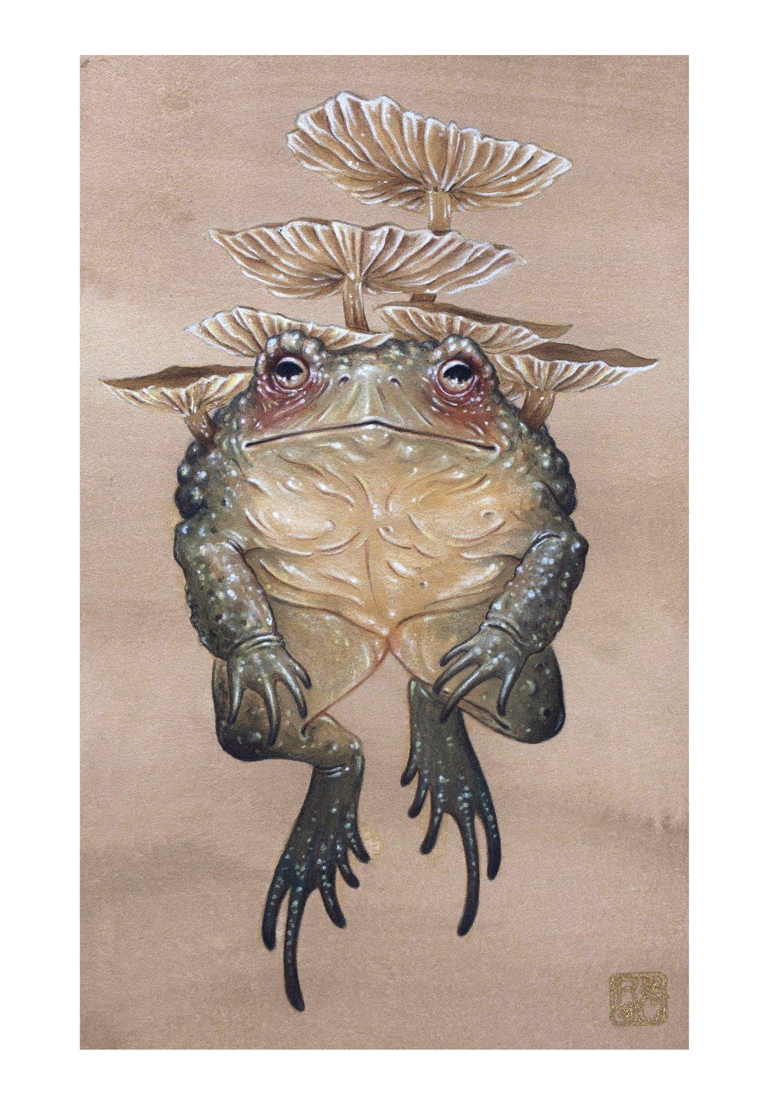 "Image of ""Toadstool"" Print"