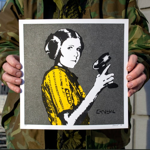 Image of Canevil - LEIA IKEA galaxy 30x30 set