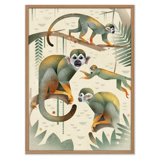 Image of Squirrel Monkeys