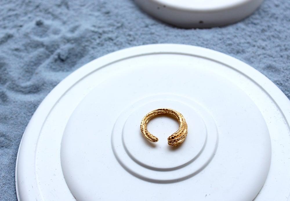 Image of spiralis ring