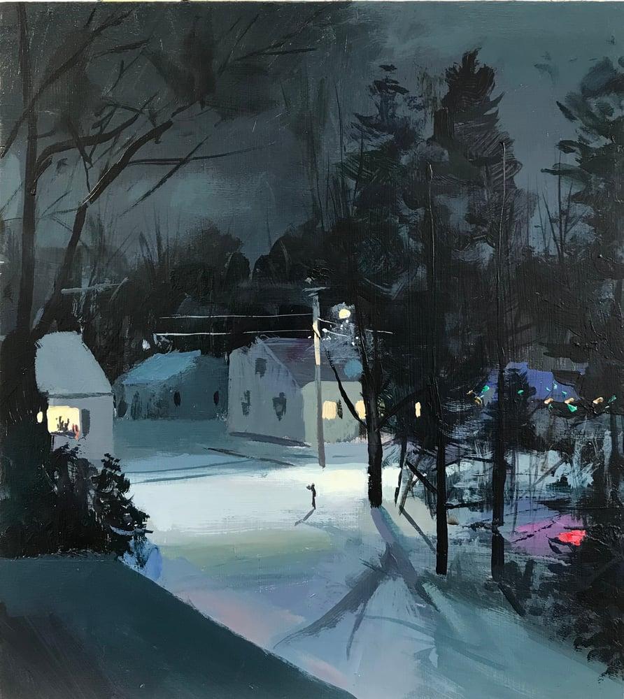 Image of Night Snow