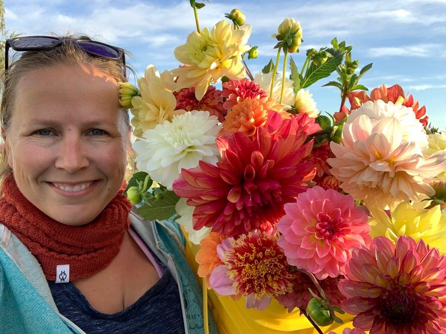 Image of 2020 Bouquet CSA - Dahlia Share